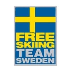 logo free skiing team sweden, partenaire de l'agence Pmd, organisation de séminaire entreprise dans les PO, stages et séjours sportifs, événementiel et location de chalets