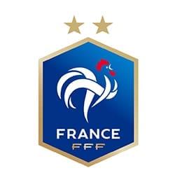 logo FFF France, partenaire de l'agence Pmd, organisation de séminaire entreprise dans les PO, stages et séjours sportifs, événementiel et location de chalets