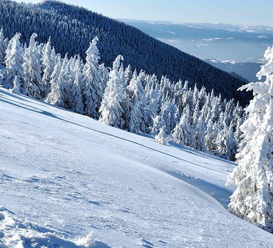 vacances d'hiver dans les PO à Font-Romeu et Pyrénées 2000 organisées par PMD, agence évènementielle dans le 66