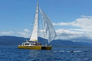 séminaire en bateau méditerranée